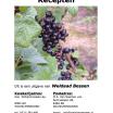 Zwarte bessen recepten e-boekje