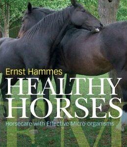 96208_96208_healthy_horses_m.jpg