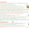 brochure-bijen-zakjes-achterkant